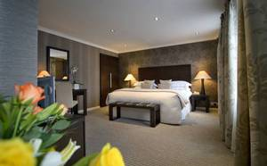 Picture of Deluxe King or Twin Room