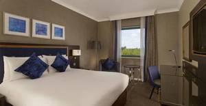Picture of Queen Guest Room
