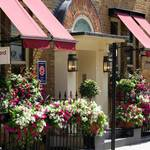 Small picture of Blandford Hotel